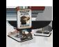 OCT-Raven-Guard-Datacards